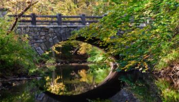 Mianus River Hiking Trails Thumbnail